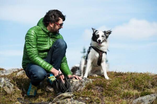 Se balader avec son chien pour renforcer les liens