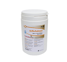 Refferhyboost