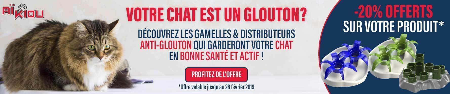 Chat glouton : on a la solution avec les gamelles Aïkiou