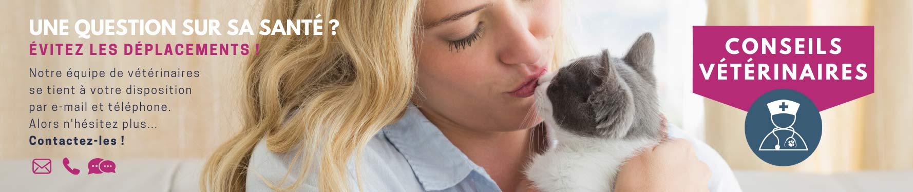 Conseils vétérinaire : évitez de vous déplacer