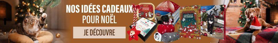 Notre sélection de produits pour Noël