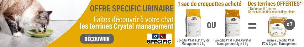 Offres Specific chats