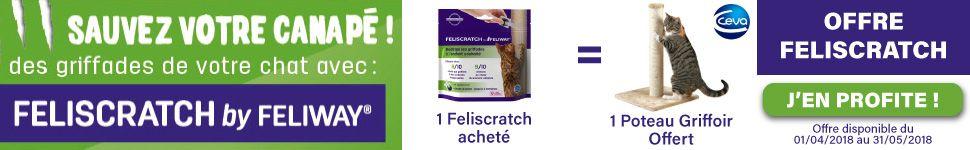 Offre Feliscratch by Feliway