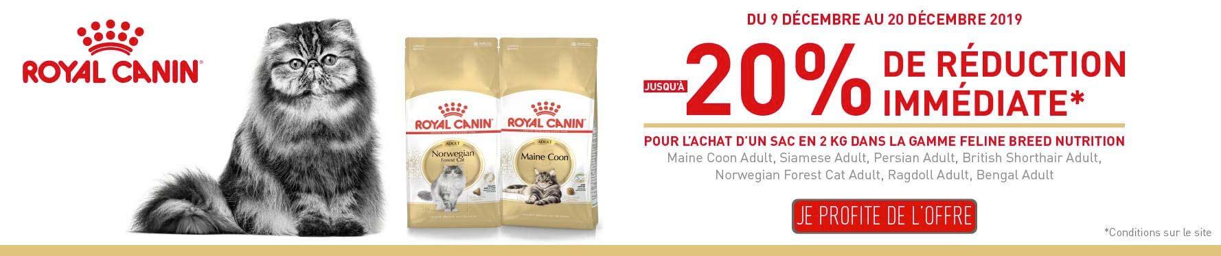 Offre Royal Canin Feline Breed