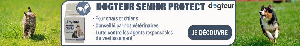 Dogteur Senior Protect
