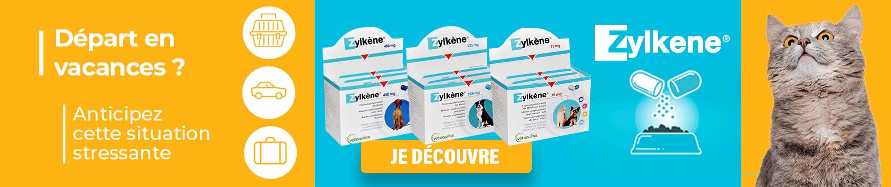 Zylkène : pour un départ en vacances en toute sérénité