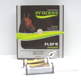 Flore Process cheval 5 x 20 ml - La Compagnie Des Animaux