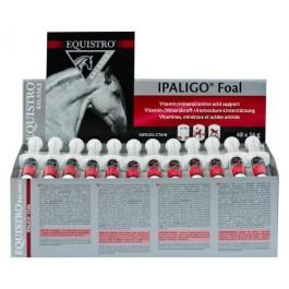Equistro Ipaligo Foal 48 Seringues - La Compagnie Des Animaux