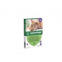 Advantage 80 chat et lapin de plus de 4 kg - 4 pipettes - La Compagnie Des Animaux