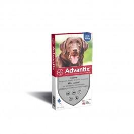 Advantix grand chien (25 - 40 kg) - 6 pipettes - La Compagnie Des Animaux