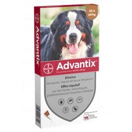 Advantix très grand chien (40 - 60 kg) - 4 pipettes - La Compagnie Des Animaux