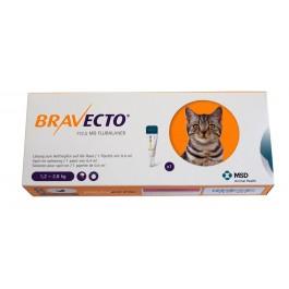 Bravecto Spot-On CHAT 1,2 - 2,8  kg 1 pipette - La Compagnie Des Animaux