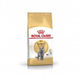 Royal Canin Chat British Shorthair Adult 10 kg - La Compagnie Des Animaux