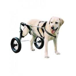 Chariot Canis Mobile pour chien paralysé du train arrière MM - La Compagnie Des Animaux