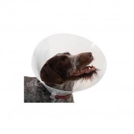 Carcan classique pour chiens et chats - 35 cm - La Compagnie Des Animaux