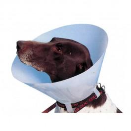 Carcan classique pour chiens et chats - 30 cm - La Compagnie Des Animaux