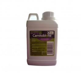 Carnitobione 500 ml - La Compagnie Des Animaux