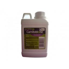 Carnitobione 5 L - La Compagnie Des Animaux