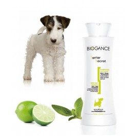 Biogance Shampooing Poils Durs pour Chien et Chiot 250 ml - La Compagnie Des Animaux
