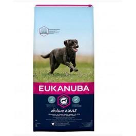 Eukanuba Chien Active Adult Grande Race au poulet 15 kg - La Compagnie Des Animaux