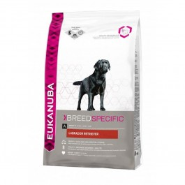Eukanuba Breed Specific Labrador Retriever 12 Kg - La Compagnie Des Animaux