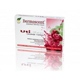 Dermoscent Uti Zen 30 tablettes - La Compagnie Des Animaux