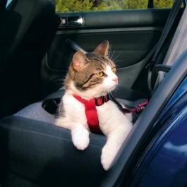 Harnais de sécurité voiture pour chat - La Compagnie Des Animaux