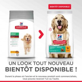 Hill's Science Plan Canine Adult Large Perfect Weight Poulet 12 kg - La Compagnie Des Animaux