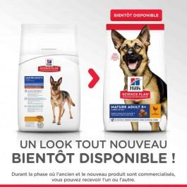 Offre -10 % Hill's Science Plan Canine Mature Adult 5+ Active Longevity Large Breed 18 kg - La Compagnie Des Animaux