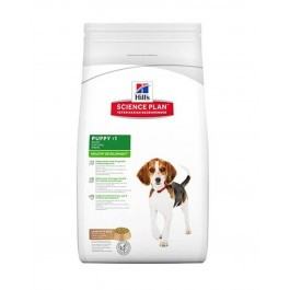 Hill's Science Plan Puppy Medium Healthy Development agneau et riz 12 kg - La Compagnie Des Animaux