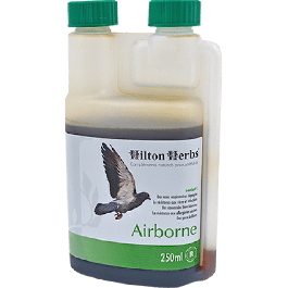 Hilton Herbs Airborne 250 ml - La Compagnie Des Animaux