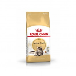 Royal Canin Maine Coon Adult 31 10 kg - La Compagnie Des Animaux