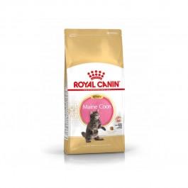 Royal Canin Maine Coon Chaton 4 kg - La Compagnie Des Animaux