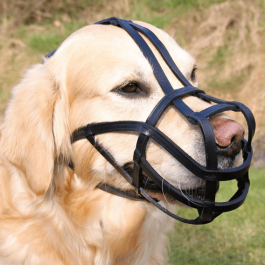 Trixie Muselière pour grands chiens L - 27 cm - cuir noir - La Compagnie Des Animaux
