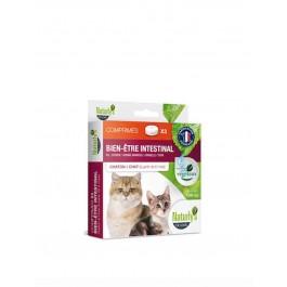 Naturlys Bien-être Intestinal chaton et chat 10 cps - La Compagnie Des Animaux
