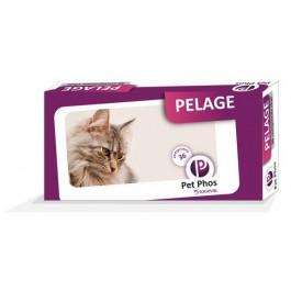 Pet Phos Pelage Chat 36 cps - La Compagnie Des Animaux