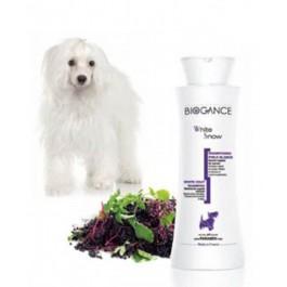 Biogance Shampooing Poils Blancs pour Chien, Chiot et Chat 250 ml - La Compagnie Des Animaux