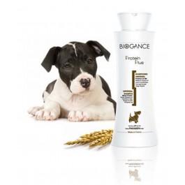 Biogance Shampooing Proteine Plus pour Chien, Chiot et Chat 250 ml - La Compagnie Des Animaux