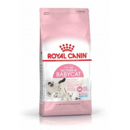 Royal Canin Féline Health Nutrition First Age Mother & Babycat 2 kg - La Compagnie Des Animaux