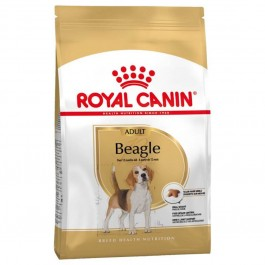 Royal Canin Beagle Adult 3 kg - La Compagnie Des Animaux