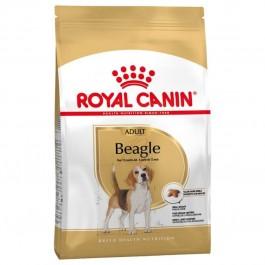 Royal Canin Beagle Adult 12 kg - La Compagnie Des Animaux