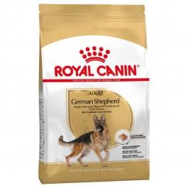 Royal Canin Berger Allemand Adult 3 kg - La Compagnie Des Animaux