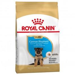 Royal Canin Berger Allemand Junior 12 kg - La Compagnie Des Animaux
