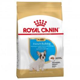 Royal Canin Bouledogue Français Junior 10 kg - La Compagnie Des Animaux