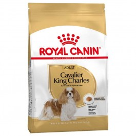 Royal Canin Cavalier King Charles Adult 3 kg - La Compagnie Des Animaux