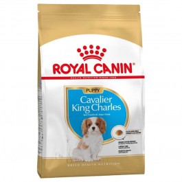 Royal Canin Cavalier King Charles Junior 1.5 kg - La Compagnie Des Animaux