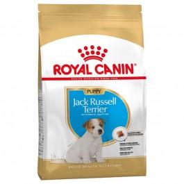 Royal Canin Jack Russel Junior 1.5 kg - La Compagnie Des Animaux