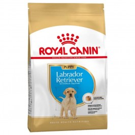 Royal Canin Labrador Junior 12 kg - La Compagnie Des Animaux