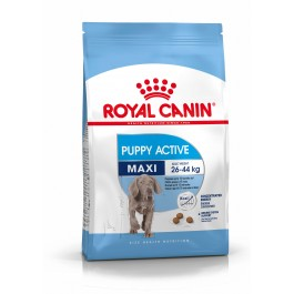 Royal Canin Maxi Junior Active 15 kg - La Compagnie Des Animaux