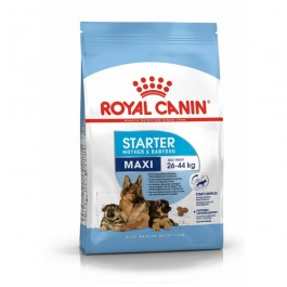 Royal Canin Maxi Starter Mother and Babydog 15 kg - La Compagnie Des Animaux
